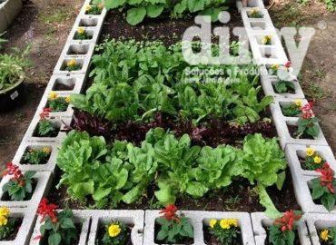como-nutrir-uma-horta