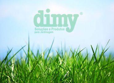 como tratar gramado natural